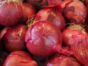 סלט עגבניות שרי ובצל